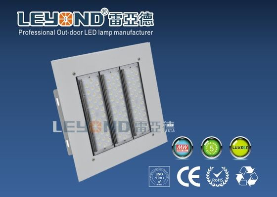 Canopy LED Lights